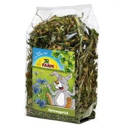 JR Farm Plantain lancéolé JR FARM 4024344071034 Friandise & Complément