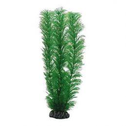 Hobby plante Egeria HOBBY  Décoration