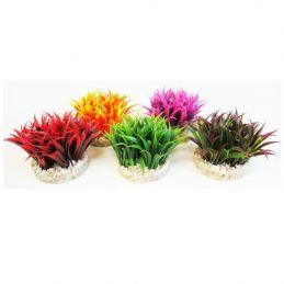 Décor aqua plant Sydeco  SYDECO 3502733850046 Plantes