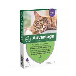 Antiparasitaire Advantage 4 kg et plus ADVANTIX  Pipettes et spray