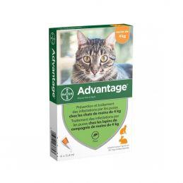 Antiparasitaire Advantage 4 kg et moins ADVANTIX  Pipettes et spray