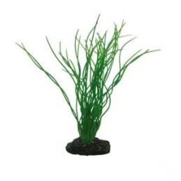 Hobby plante Sagittaria 20 cm HOBBY 4011444415028 Décoration