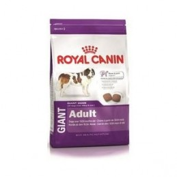 Royal Canin Giant Adult (15+3kg) ROYAL CANIN 3182550704991 Croquettes Royal Canin
