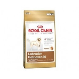 Royal Canin Labrador Retriever 12 kg ROYAL CANIN 3182550715645 Croquettes Royal Canin