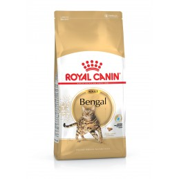Croquettes Royal Canin Adult Bengal ROYAL CANIN  Croquettes Royal Canin