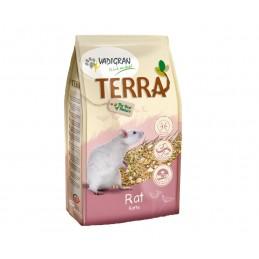 Vadigran Terra Rat