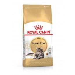 Croquettes Royal Canin Adult Main Coon ROYAL CANIN  Croquettes Royal Canin