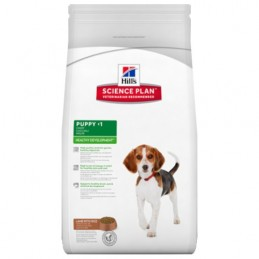 Hill's Puppy Agneau & Riz Healthy Development 3 kg HILL'S 052742769608 Croquettes Hill's