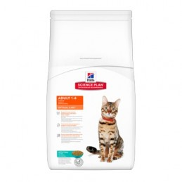 Hill's Feline Adult Thon Optimal Care 2 kg HILL'S 52742873800 Croquettes Hill's