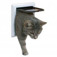 Accessoires chats