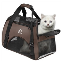 Caisse de Transport Chat & chaton - L'exotus