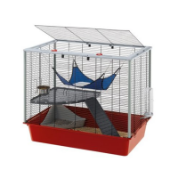 Cage Rat, Furet, Chinchilla : Animalerie L'exotus