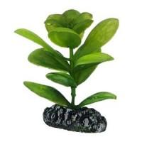 Décors et plantes pour aquarium - Equipement aquariophilie L'exotus