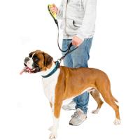 Laisse pour chien : Laisses résistantes pour chiens et chiots
