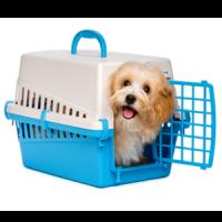 Cage Transport Chien - Caisse de transport pour chiens