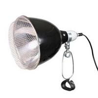 Lampe Chauffante et éclairage pour Terrarium - Accessoire Reptile et équipement sur Exotus