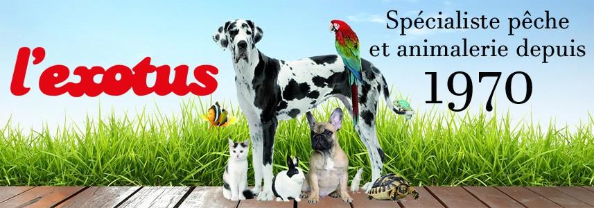 Articles et conseils en animalerie depuis 1970