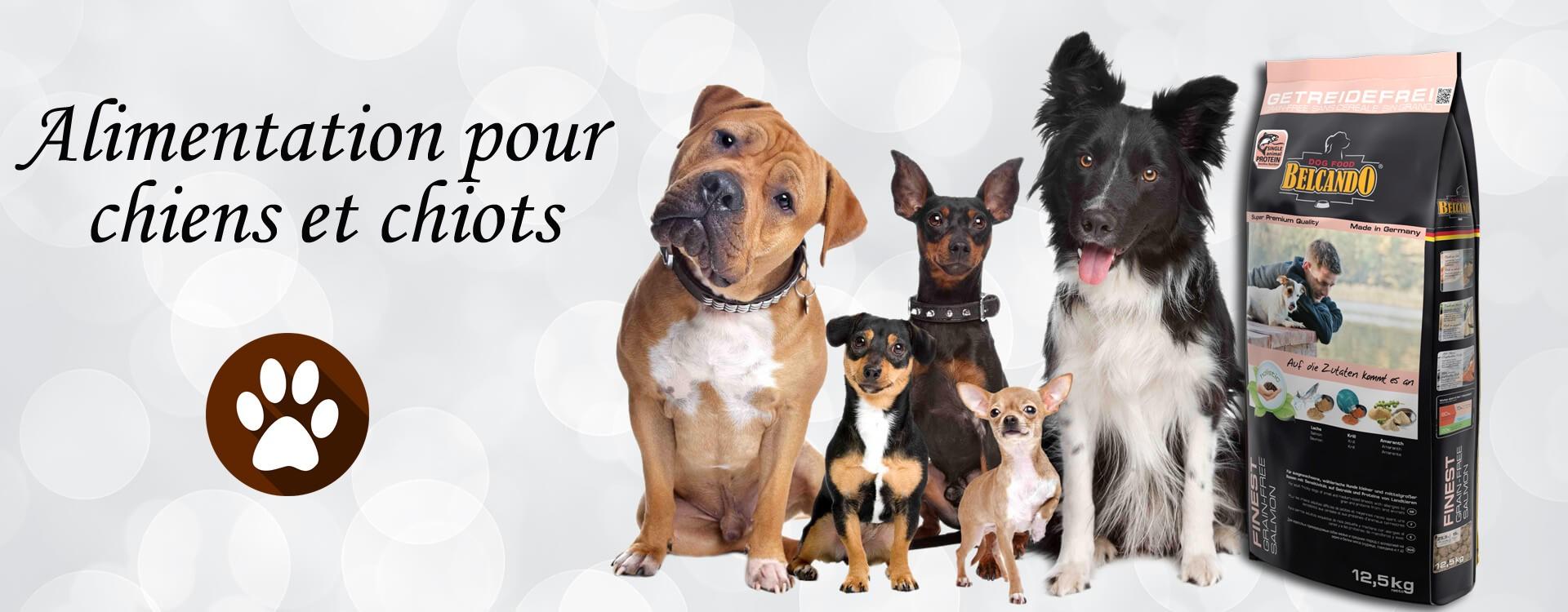Alimentation pour chiens et chiots